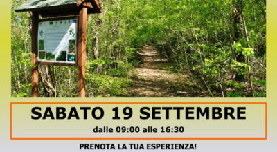 Immersione forestale alla Selva, unico Forest Bathing Center della Regione