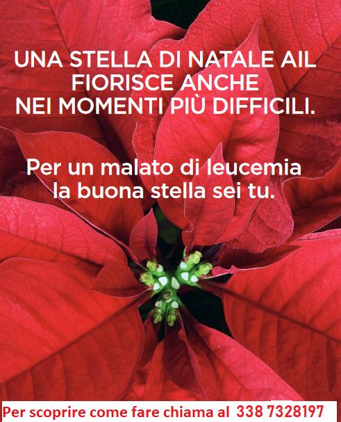 Stella Di Natale Ail 2021.Ail La Buona Stella Sei Tu Comune Di Castelfidardo